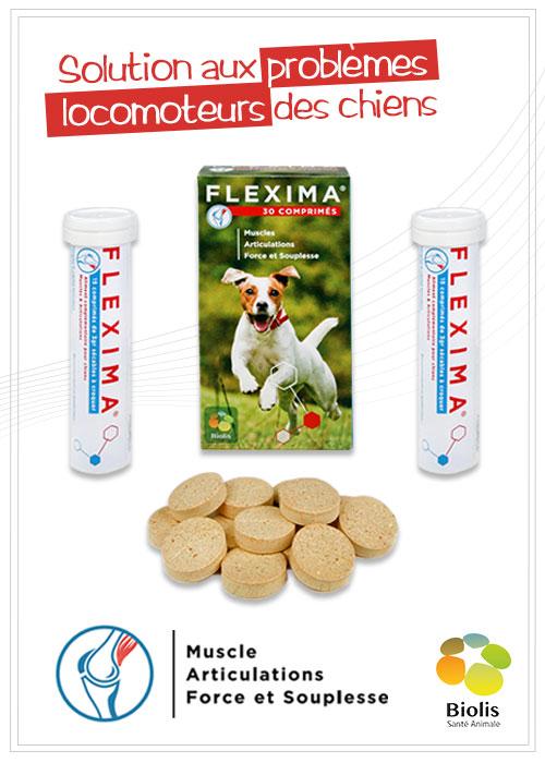 Flexima Complément Alimentaire en soutien aux fonctions articulaires et musculaires des chiens
