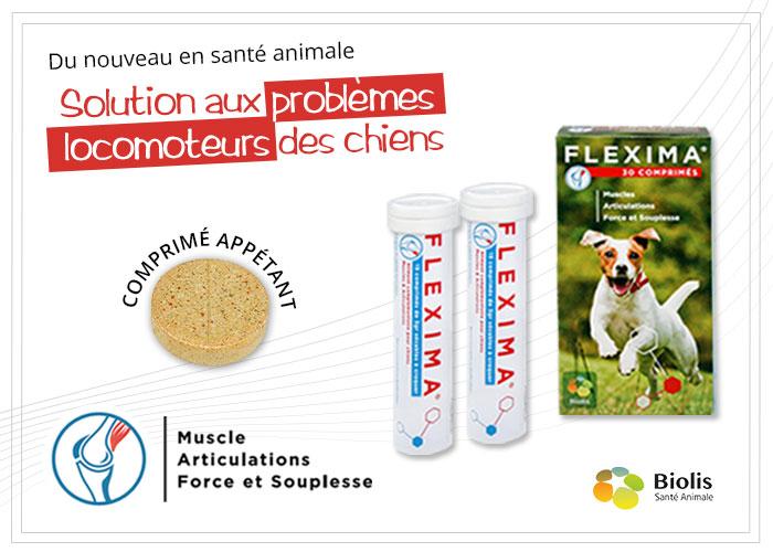 Flexima Complément Alimentaire - Solution aux problèmes locomoteurs des chiens